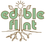 edible flint